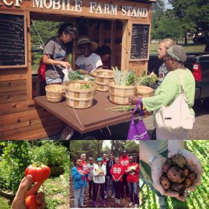 Photo of youth serving seniors in a farm stand