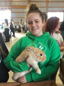 photo 4-H member with a rabbit