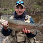 fisherman holding large rainbow trout