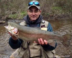 fisherman holding large rainbow trout
