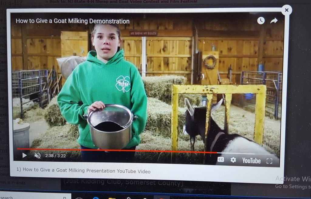 4-H member holding a milking bucket next to a goat