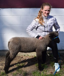 Elizabeth Schalick with her Suffolk market lamb.
