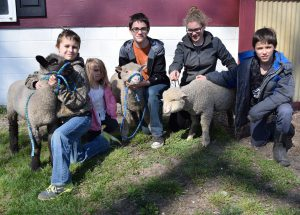 The Whinny Pigs 4-H Club with their market lambs.