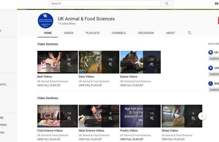 Webinars as Tools for Animal Science Education