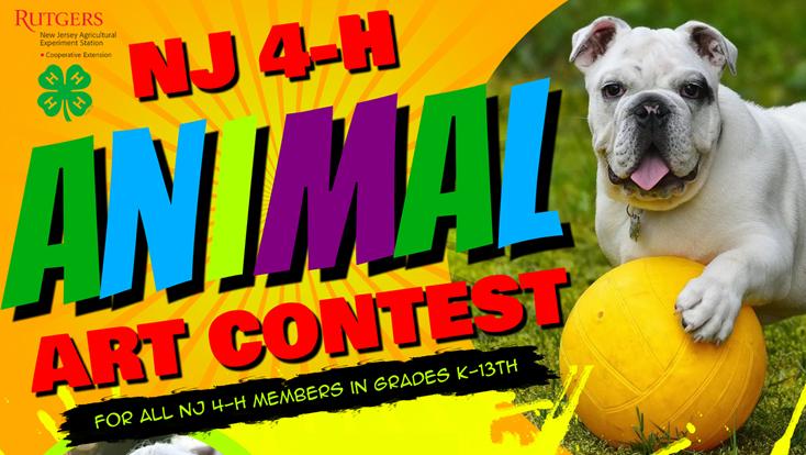NJ 4-H Animal Art Contest – Get Creative – Entries Due April 12!