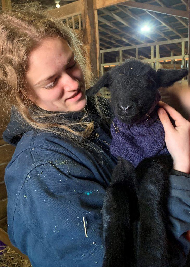 Female 4-H member holds lamb wearing sweater
